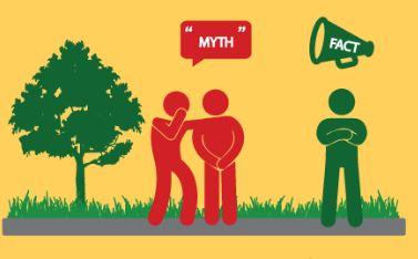 Tree Mythbusters