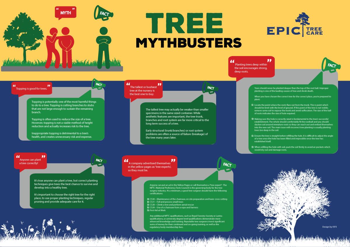 tree-infographic